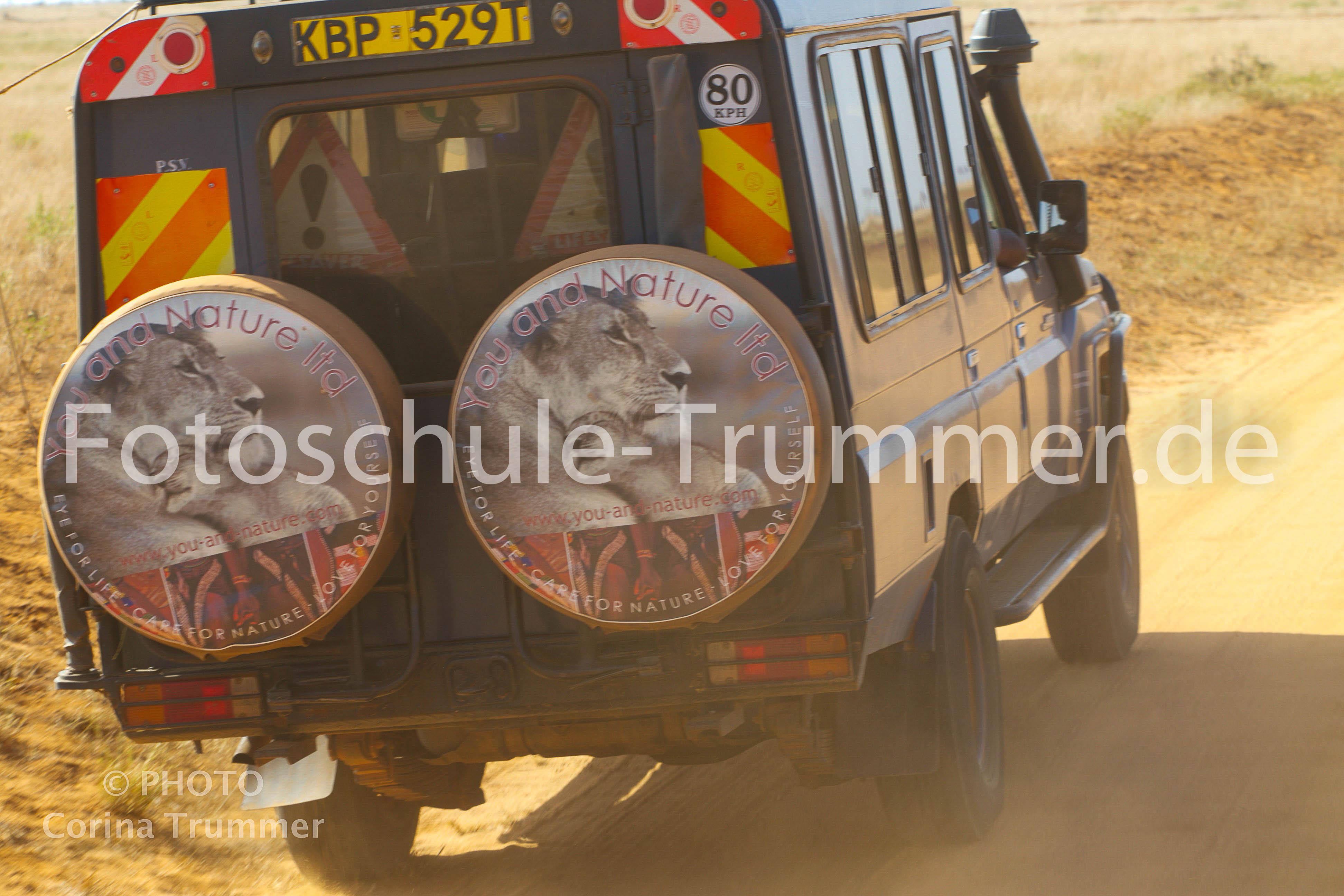 kenia 16 Fotoreise tag4 safari-4